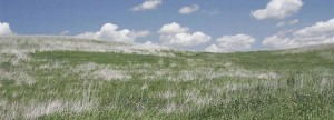 CRP Ground feature