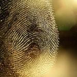 FingerprintCrime-Featured2013