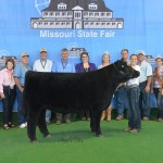 Photo Courtesy of Missouri State Fair:  Grace Riley, 13, of Pleasant Hill, received Reserve Champion Overall in the FFA Market Steer Show at the 2014 Missouri State Fair on August 8. Grace is the daughter of Tim and April Riley and is a member of the Pleasant Hill FFA. She is in the eighth grade at Pleasant Hill. Pictured with Grace, left to right, is Fair Commissioner Lowell Mohler, Fair Commissioner Sherry Jones, Fair Commissioner Barbara Hayden, Fair Commissioner Ted Sheppard, Fair Commissioner Dr. Jack Magruder, Director MO Department of Agriculture Richard Fordyce, Judge Christy Gabel, 2014 Fair Queen Hanna Keene, Fair Director Mark Wolfe, Beef Superintendent David Dick, 2014 MO Beef Queen Julie Crouch and President MCA Jim McCain.