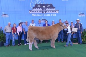 Photo Courtesy of Missouri State Fair:  Stetson Wiss, 11, of Lamar, received Overall Champion in the 4-H Market Steer Show at the 2014 Missouri State Fair on August 12. Stetson is the son of Casey and Brooke Wiss and is a member of the Learn-A-Do 4-H Club. He is in the fifth grade at Lamar Elementary. Pictured with Stetson, left to right, is Fair Commissioner Lowell Mohler, Fair Commissioner Sherry Jones, Fair Commissioner Barbara Hayden, Fair Commissioner Ted Sheppard, Fair Commissioner Dr. Jack Magruder, Director MO Department of Agriculture Richard Fordyce, Judge Christy Gabel, 2014 Fair Queen Hanna Keene, Fair Director Mark Wolfe, Beef Superintendent David Dick, 2014 MO Beef Queen Julie Crouch and President MCA Jim McCain.