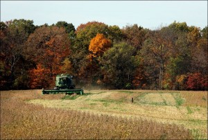 farm-land-values-11-01-2011