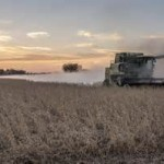 Midwest economy slowing on lower farm income