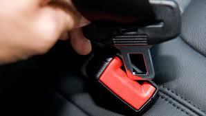 seat belt 2