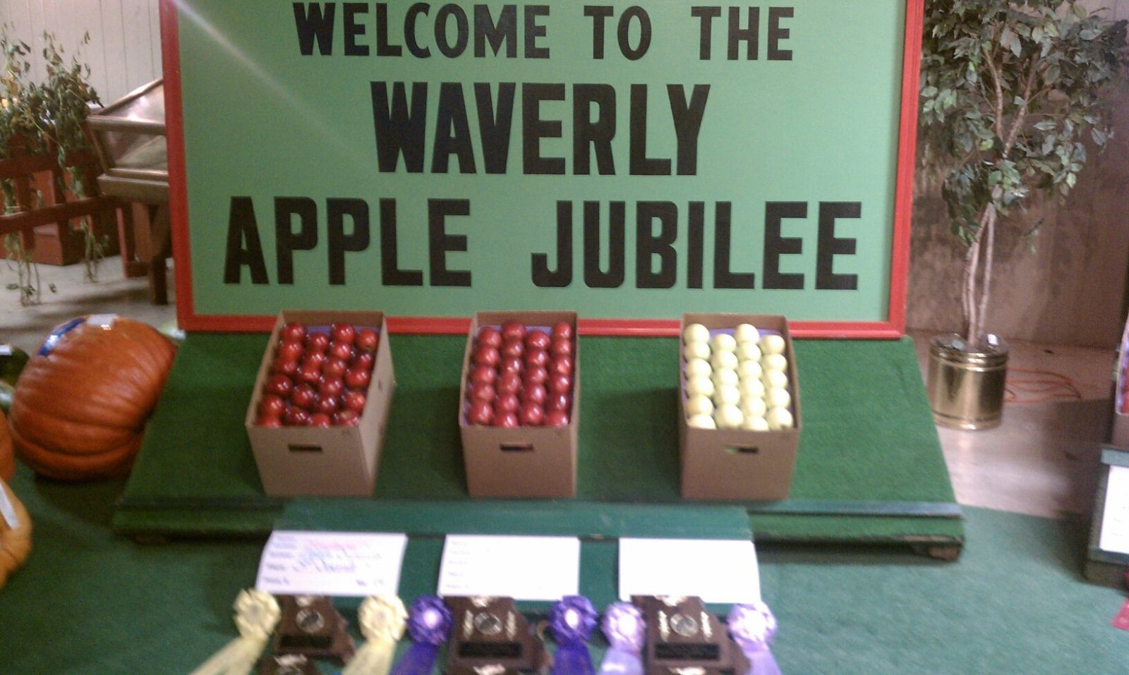 Waverly Apple Auction Results