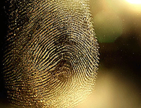 FingerprintCrime-Featured2013