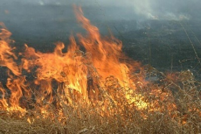 Grass fire south of Higginsville reported