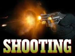 Reports of Shots Fired in Hale