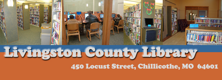 Livingston County Library hosts virtual New Year's Eve violin concert
