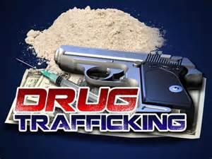 Drug Smuggler Bound to Circuit Court