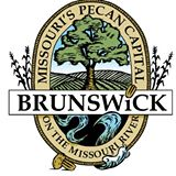 Brunswick City Council to assemble for May meeting