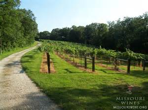 Missouri Wine Industry Growing Quickly