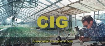 NRCS now accepting applications for Conservation Innovation Grants