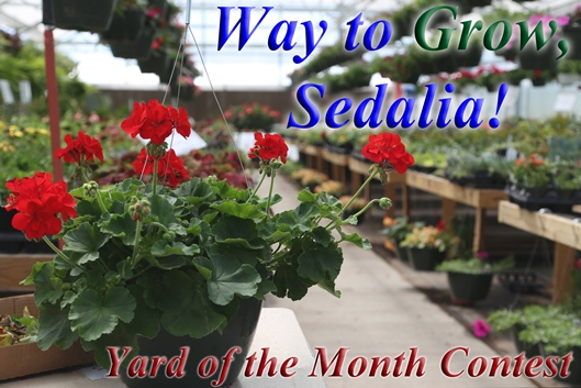 Sedalia renews 'Yard of the Month' contest