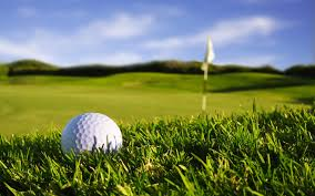 High school girl's golf tournament results