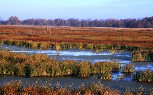 Funding is available for Missouri landowners to restore wetlands