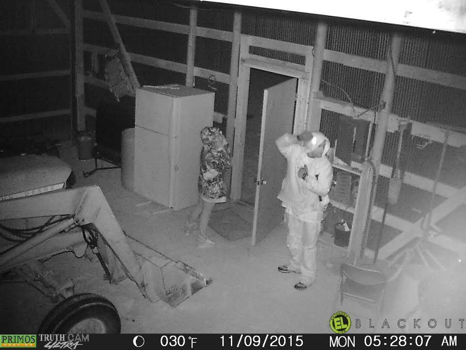 Livingston County Sheriff's Office seeking public information in burglary, theft investigation