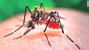 Third case of Zika virus confirmed in Missouri
