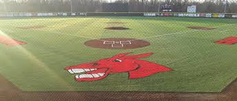 Latest ABCA poll has the Mules at no. 16