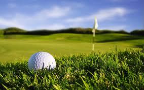Local high school boy's golf results: 04/18