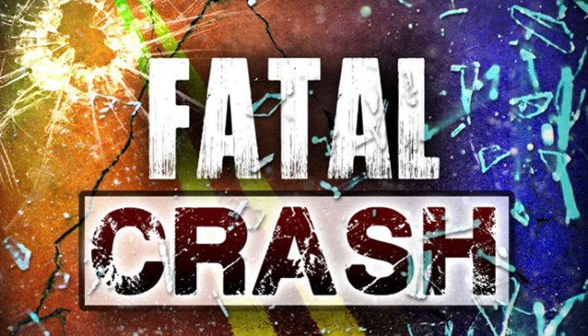 Hitting a deer was fatal in Greene County