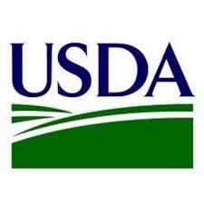 Slim chance USDA will change corn yield or acreage