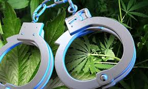 Three facing felony drug allegation in Saline County