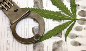 Teenager from St. Louis caught with marijuana in Macon County