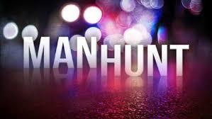 Manhunt near Lawson ends with suspect in custody
