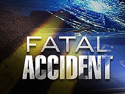 Trenton resident dies after horse and buggy crash