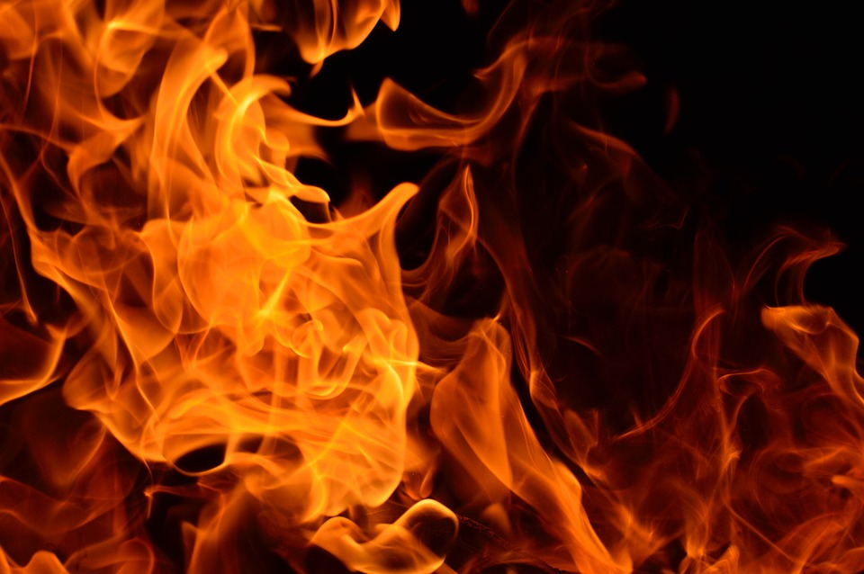 Fire officials respond to flames in Shafer Park