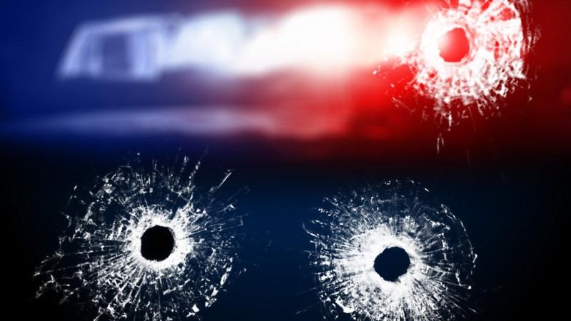 Shots fired during argument in Columbia