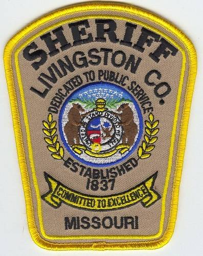 Reported hit-and-run driver in Livingston County stopped by deputies