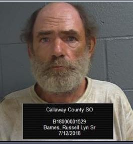 Cache of stolen property recovered in Callaway County.