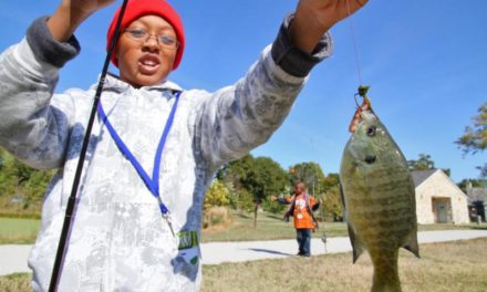 MDC announces free fishing days in June