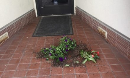 Chillicothe respond to downtown vandalism