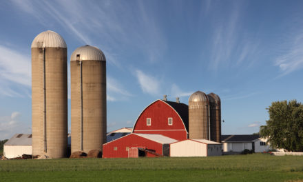 Delayed planting provides an opportunity to inspect tower silos