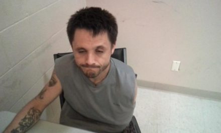 Pleasant Valley man arrested in Livingston County