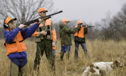 MDC to offer Wingshooter classes in Kansas City area