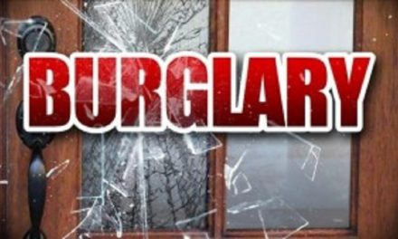 Moberly man facing burglary charge after stealing television