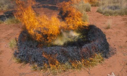 Missouri man charged with setting grass fires in California