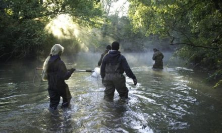 Free fur trapping clinic by the Missouri Trappers Association and MDC
