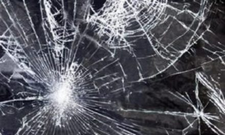Paris woman seriously injured in Monroe County Saturday