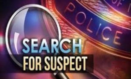 Cooper County search suspended, warrants listed for subject