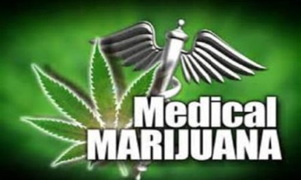Concerns raised about medical marijuana licensing process