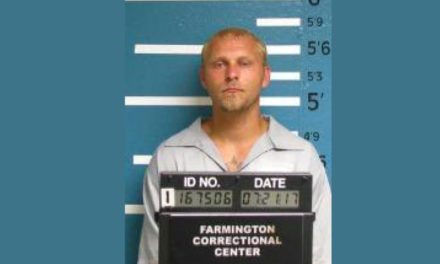 Sedalia man facing ten charges in Pettis County
