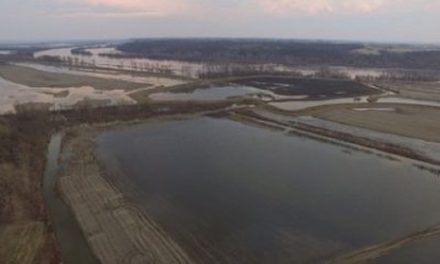 Levees in 'pretty good shape,' but expect a dry growing season