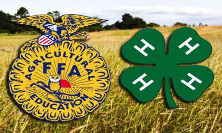 Lafayette County 4-H/FFA Fair Achievement Day results