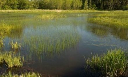 New WOTUS rule finalized