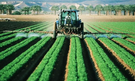 HELM Agro US Launches New Reviton™ Herbicide