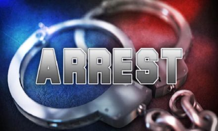 felony possession arrest for Kansas woman Saturday in Platte County